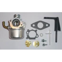 Carburateur compatible Briggs Stratton 798653 696981