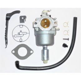 Carburateur compatible Briggs Stratton 799727 698620